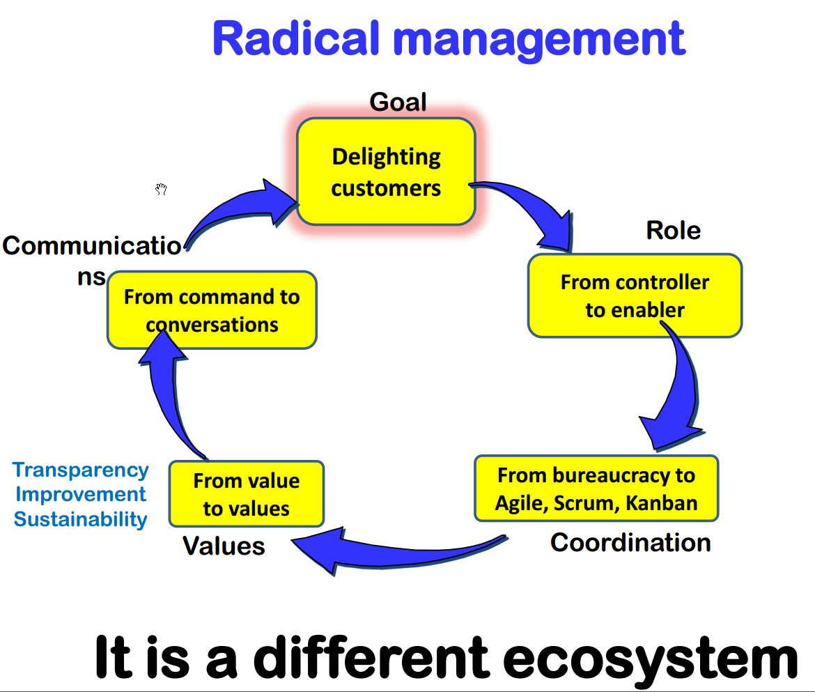 Steve-Denning---Radical-Management
